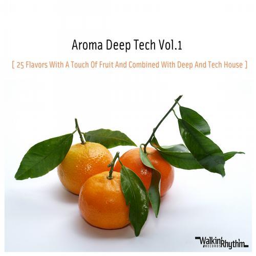 Va aroma deep tech vol 1 electrobuzz - Deep house tech ...