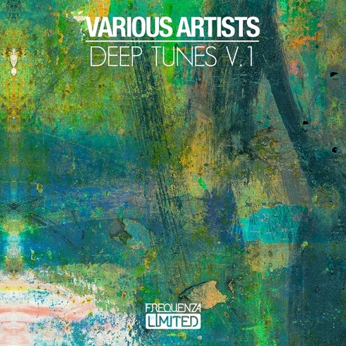 Va deep tunes v 1 electrobuzz for Best house tunes of all time