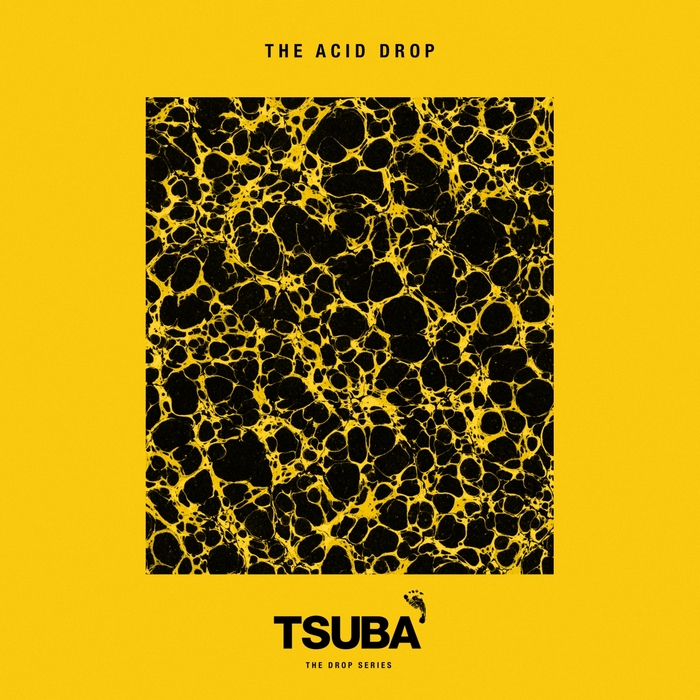 Va the acid drop tsuba tsubacd 032 electrobuzz for Best acid house albums