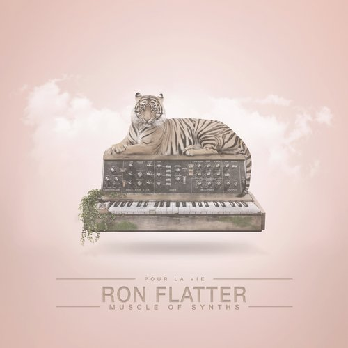 Ron flatter muscle of synths plv032 electrobuzz for Classic house synths