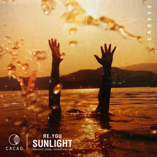 Download Sunlight on Electrobuzz
