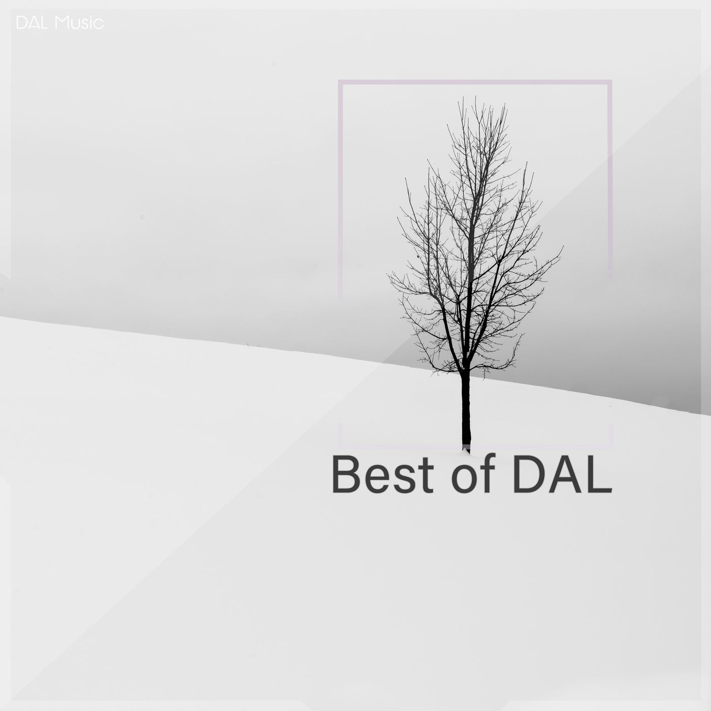 Download Best of Dal on Electrobuzz