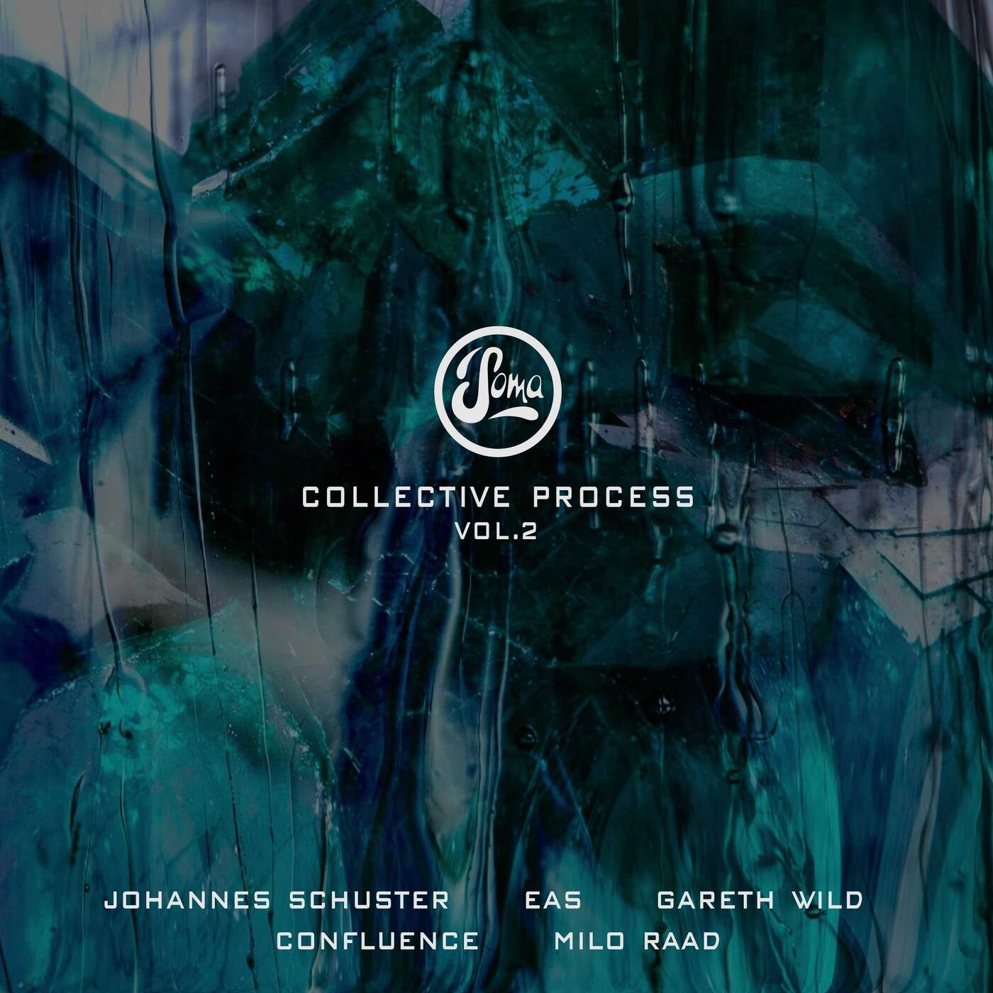 Download Collective Process Vol. 2 on Electrobuzz