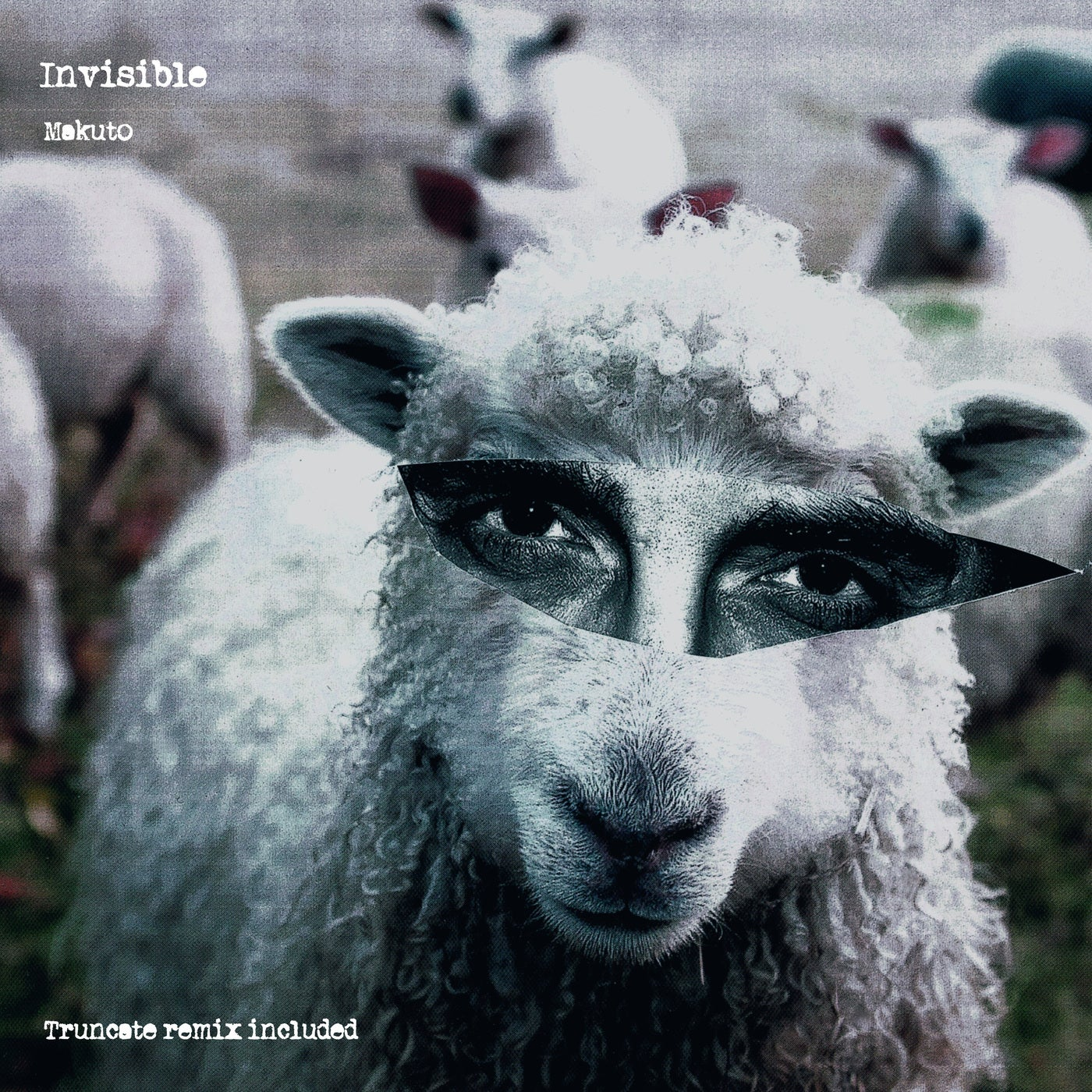 Download Invisible on Electrobuzz