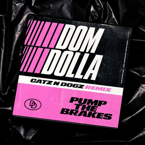 Download Pump the Brakes (Catz 'n Dogz Extended Remix) on Electrobuzz