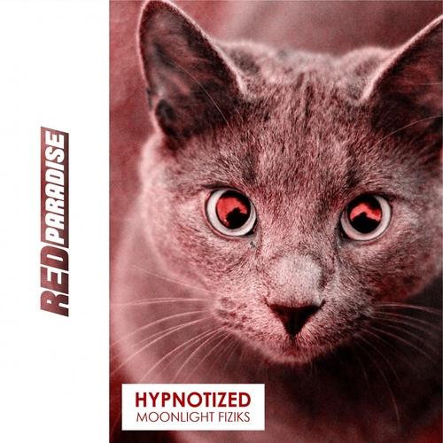 Download Hypnotized on Electrobuzz
