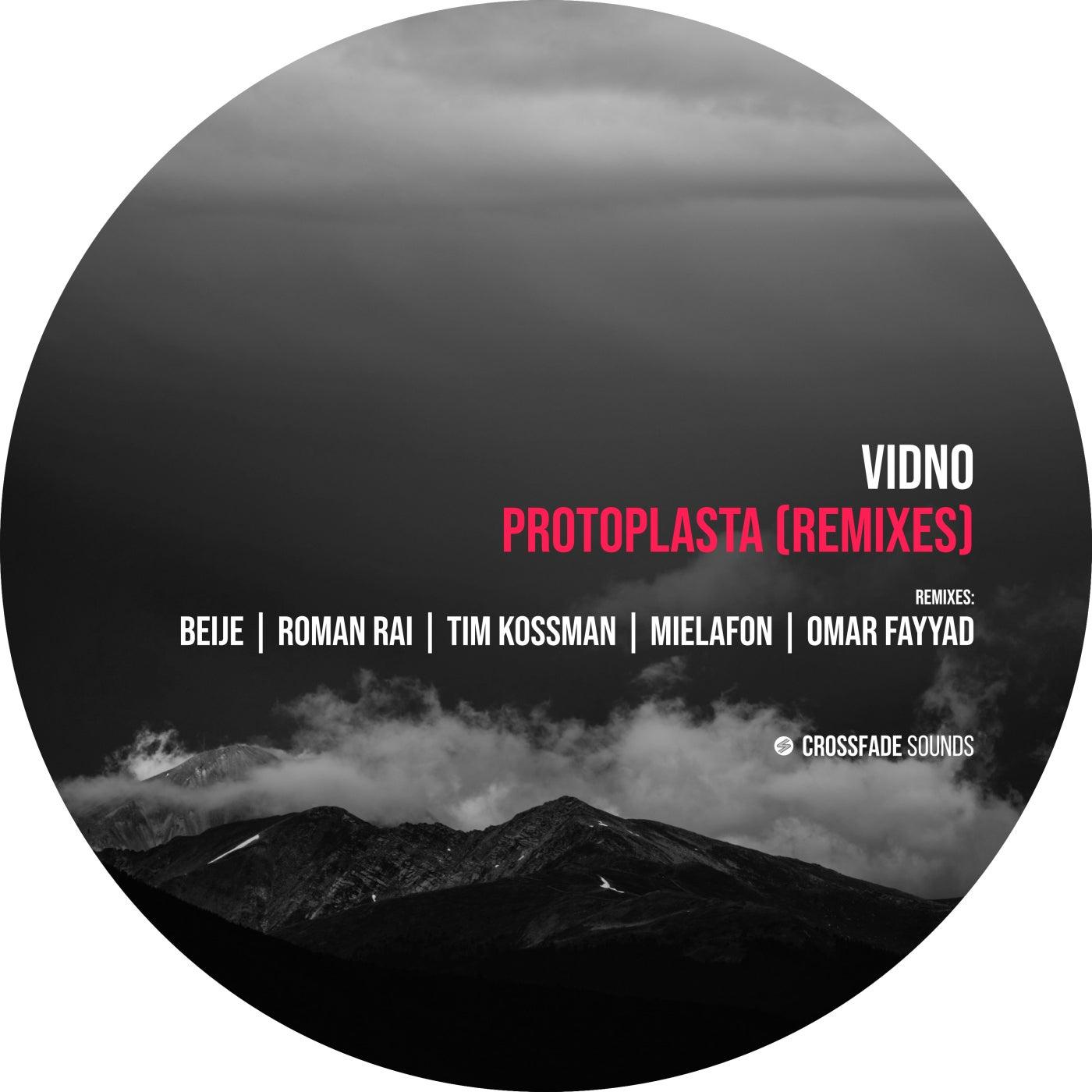 Download Protoplasta (Remixes) on Electrobuzz