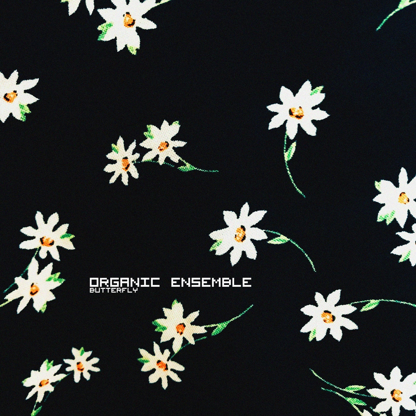 Download Butterfly EP on Electrobuzz