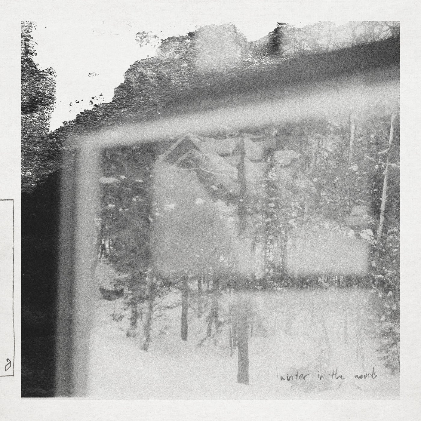 Download Winter In The Woods on Electrobuzz